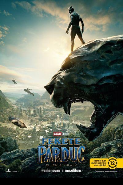 Fekete Párduc – Plakát